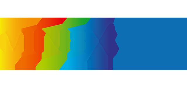 Minex Россия 2019