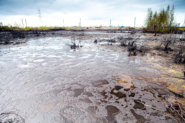 загрязнение водоема