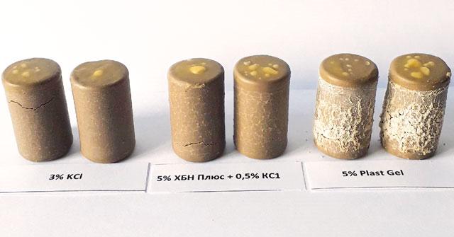 Фото стандартных глинистых столбиков после 4 часов выдержки в водных растворах ингибиторов