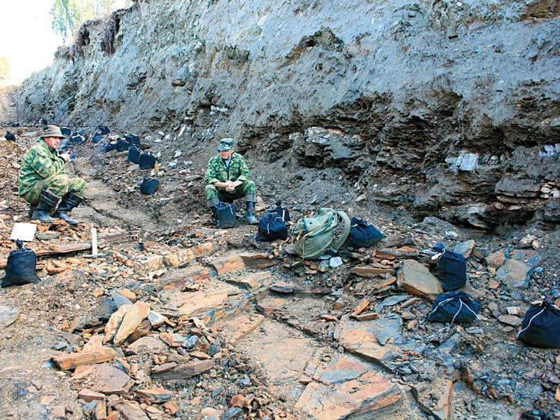 геологоразведка золото