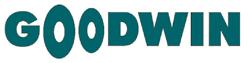 ООО «Концерн Гудвин (Гудвин Европа)» лого