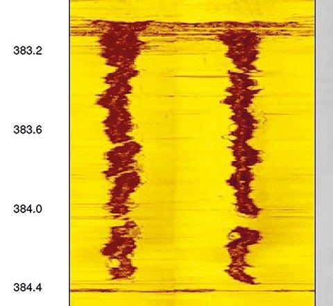 Рисунок 3. Изображение акустического сканера